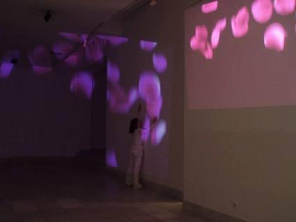 aleksandra-vasovic-rose-petals-art-installation-03