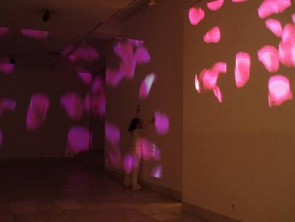 aleksandra-vasovic-rose-petals-art-installation-04